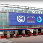 El Instituto de la Empresa Familiar en la COP25
