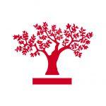 Comunicado del Instituto de la Empresa Familiar y de las Asociaciones Territoriales de Empresa Familiar